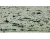 Hérault - Reconnaissance de calamité agricole suite aux pluies violentes de septembre 2020